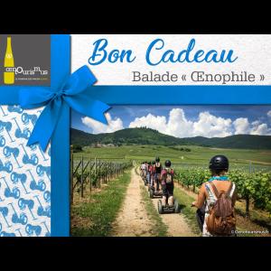 Bon-cadeau-balade-oenphile-Segway-Alsace