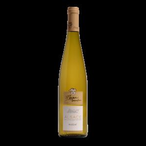 Muscat-Vins-Meyer-Eguisheim