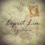 Esprit Lin